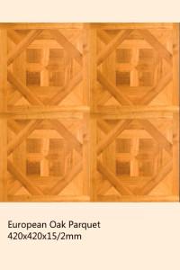 wood parquet 1 (25)